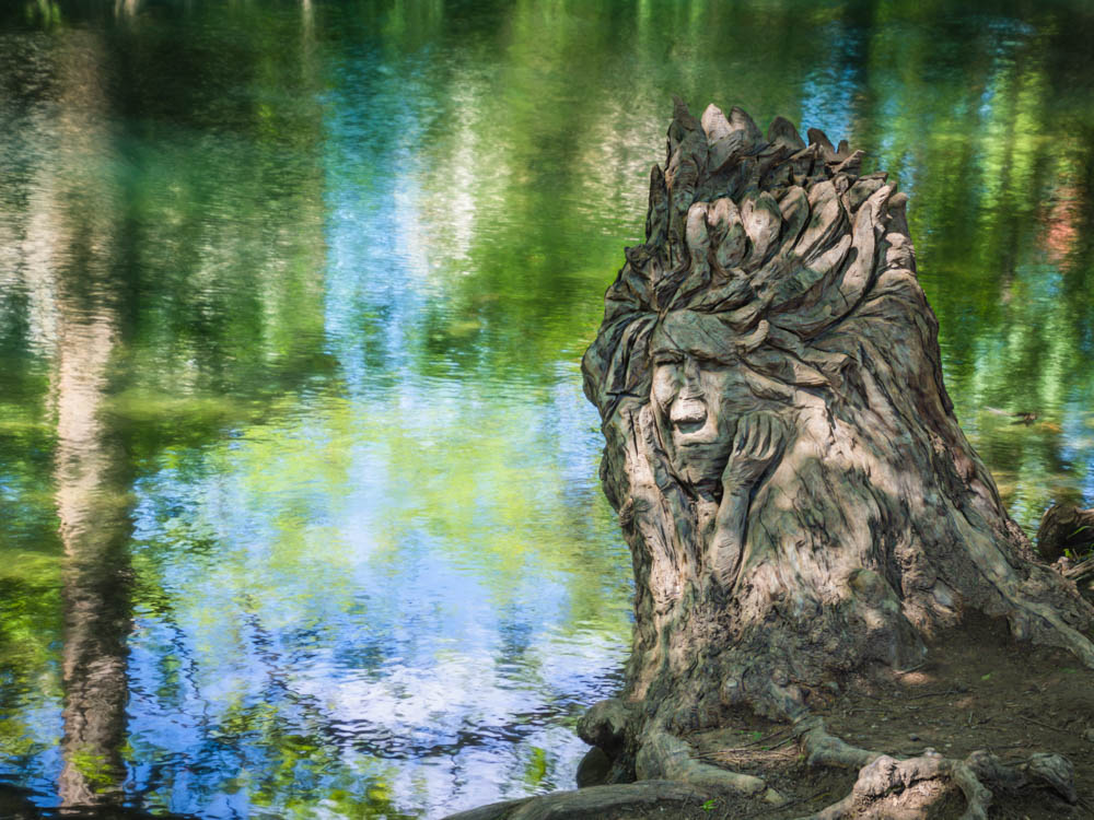 Stump Carving on Cypress Creek