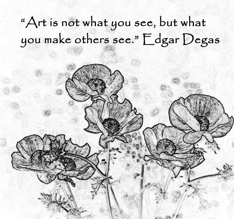 White-Prickly-Poppies-drawing-wquote