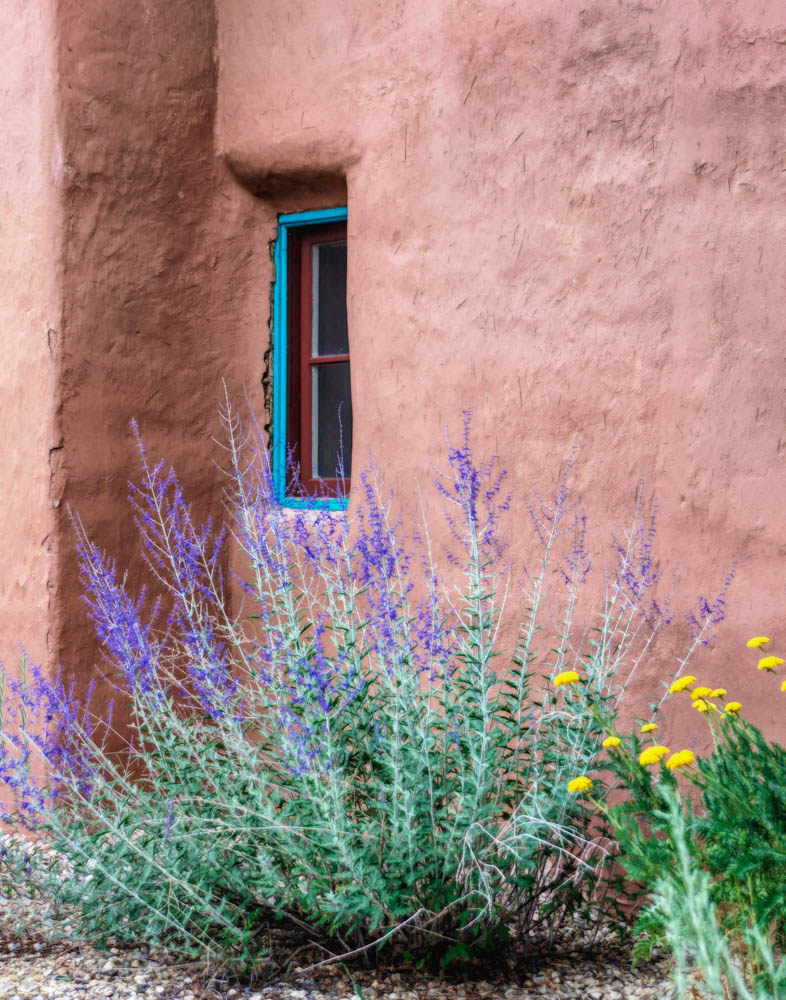 Window and Flowers, Taos